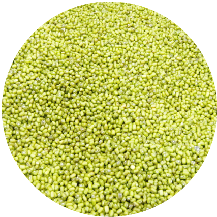 安定した高品質の原料豆